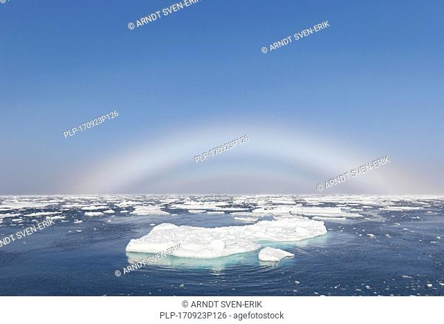 Fogbow / fog bow / white rainbow / sea-dog over the Arctic Sea at Svalbard, Norway