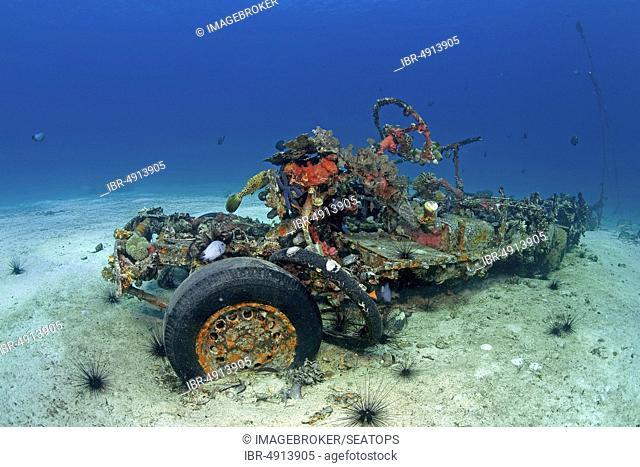 Sunken car wreck of a Jeepney off the island Malapascua, Cebu, Philippines, Asia