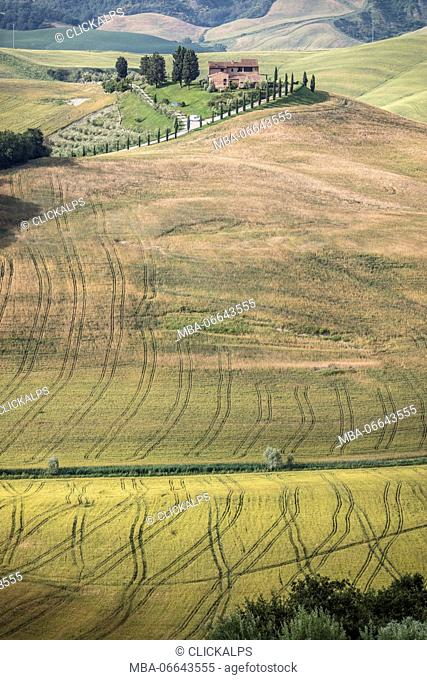 The curved shapes of the multicolored hills of the Crete Senesi (Senese Clays) province of Siena Tuscany Italy Europe