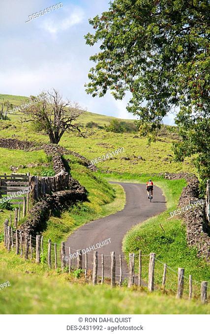 Male cyclist biking on Thompson Road; Ulupalakua, Maui, Hawaii, United States of America