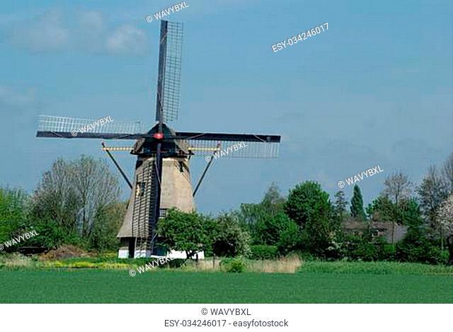 Windmill of Holland on green grass