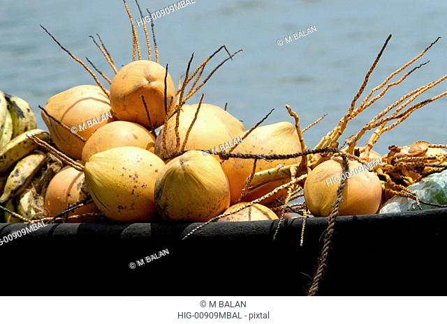 COCONUTS AND VEGETABLES IN BOAT