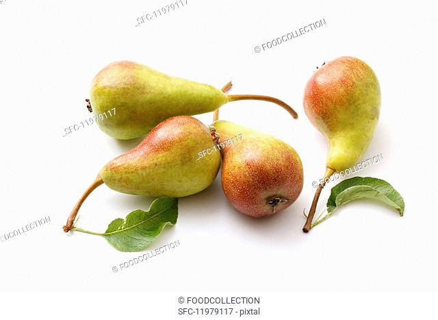 Wild pears with leaves