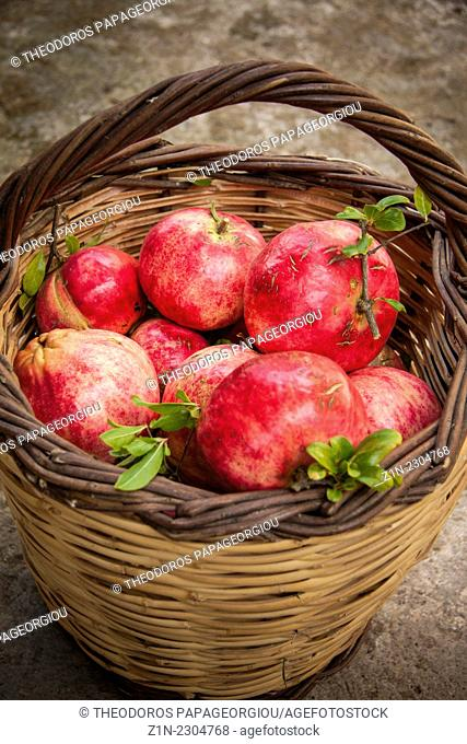 A basket with pomegranates at Pournaria village. Arcadia, Peloponnese, Greece