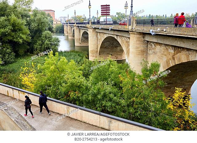 Stone Bridge over Ebro River, Logroño, Way of Saint James, La Rioja, Spain, Europe