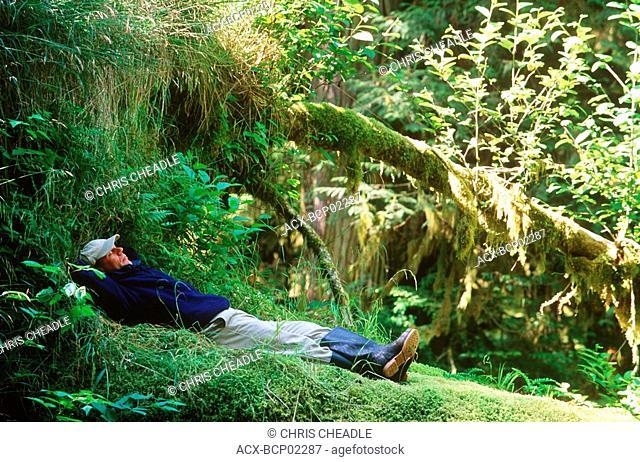 Haida Gwaii, near Burnaby Narrows, man sleeps near small creek, British Columbia, Canada