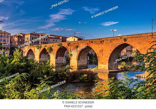 France, Tarn, Albi, episcopal city ( UNESCO World Heritage) (Saint James way), Pont Vieux on the Tarn river