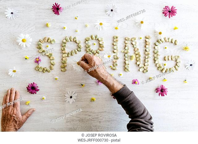 Man's hands shaping the word 'spring' with dried beans surrounded by flowers
