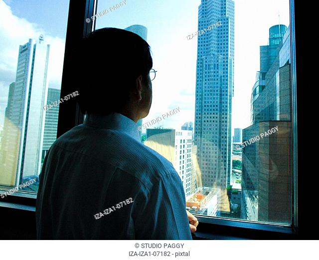 Rear view of a businessman looking through a window