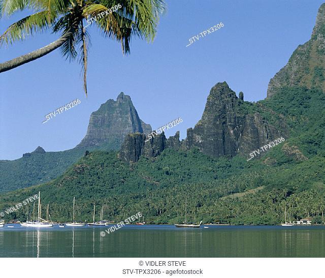 Bay, Cook's, French polynesia, Holiday, Landmark, Moorea, South pacific, Tahiti, Tourism, Travel, Vacation