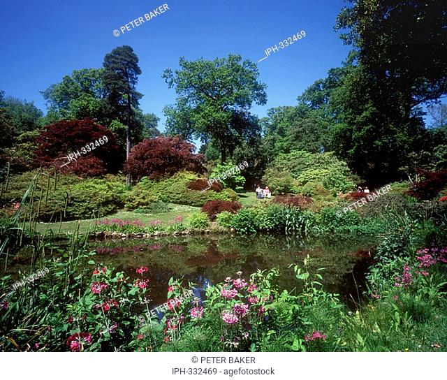 View across the lake in the botanical gardens of Exbury, near the New Forest