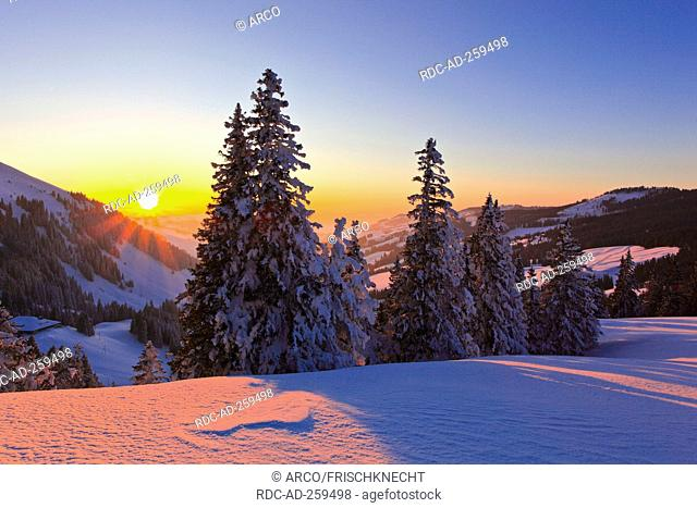 Evening mood in the pre-Alps Bernese Midlands Switzerland