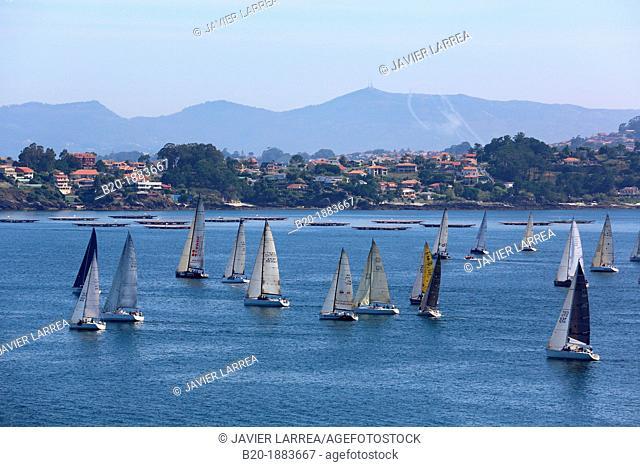Sailboats in the Ria de Vigo, View from Baiona, Pontevedra, Galicia, Spain
