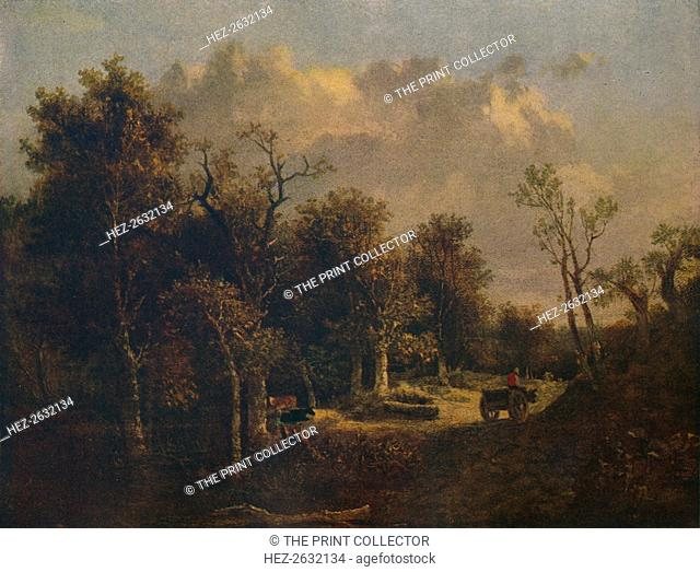 'The Edge of the Forest, with Farm Cart and Cattle', c1811. Artist: John Crome