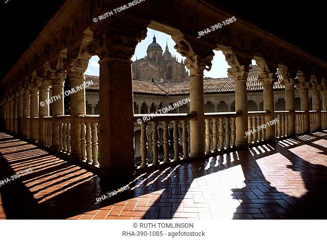 Cathedral viewed from the cloisters of Las Duenas Convent, Salamanca, Castile Leon, Spain, Europe