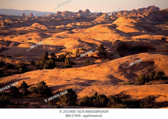 USA, United States of America, Utah: Slick Rock State Park near Moab