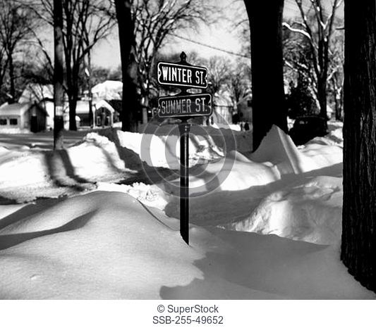 Snowy intersection with street name signs
