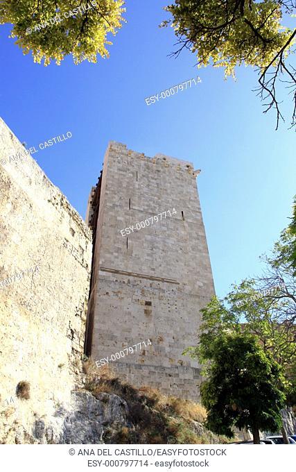 Elephant tower, Cagliari town,Sardinia island, Italy, Europe
