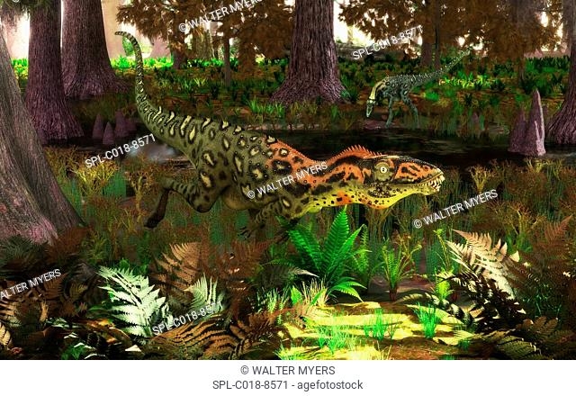Masiakasaurus dinosaurs. Artwork of two small predatory theropod dinosaurs of the genus Masiakasaurus, hunting by a river in a forest of cypress