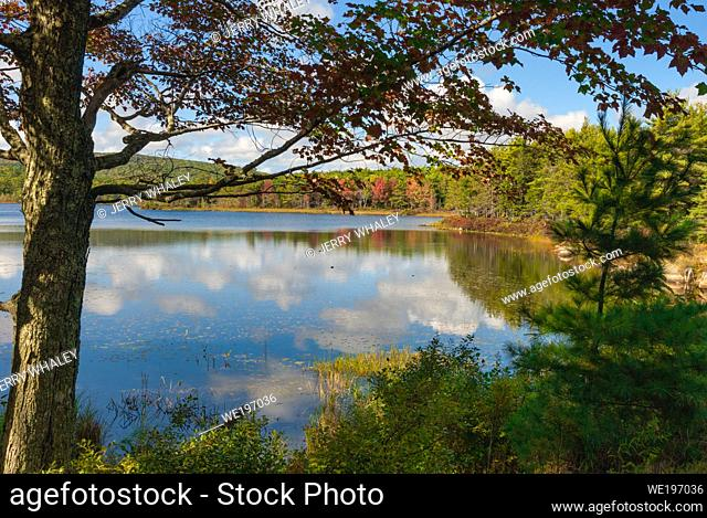 Witch Hole Pond in Acadia National Park on Mount Desert Island in Maine, USA