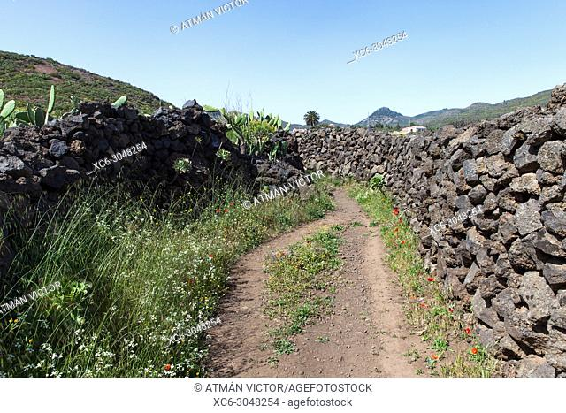 Trail in southern Tenerife island. Canary Islands, Spain