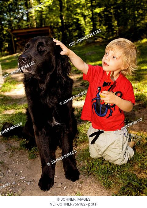Boy tapping a dog, Sweden