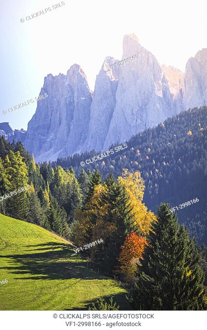 Santa Magdalena, Funes valley. Puez Odle Natural Park, South Tyrol, Italy