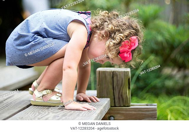 A three-year-old girl looks over the edge of a wooden deck at JC Raulston Arboretum; Raleigh, North Carolina, USA
