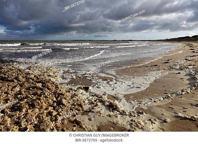 Beach, Ile d'Oleron, Charente Maritime, Puy-de-Dome, Auvergne, France