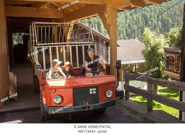 Hay harvest, Haymaking on an alpine farm. This vehicle (Muli) can go steep slopes. It`s a tiny village of a handful of farms