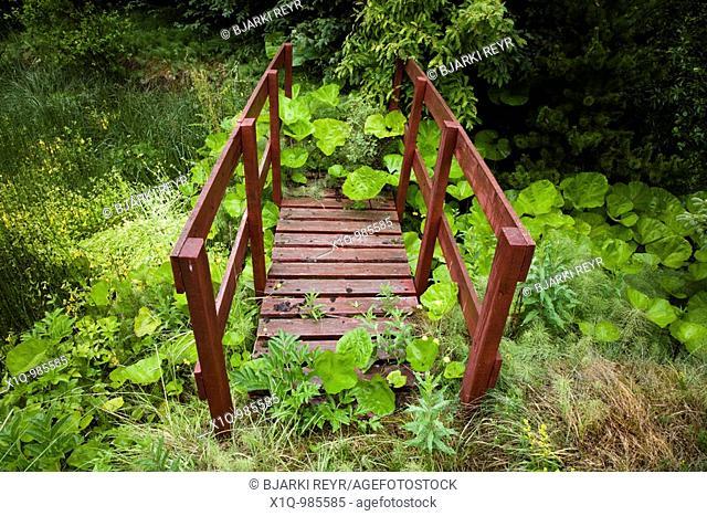 Old overgrown footbridge  Iceland