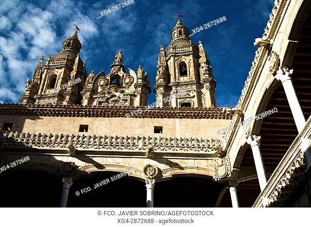 Torres de la Clerecía desde el patio de la Casa de las Conchas. Salamanca. Castilla-León. España. Europa