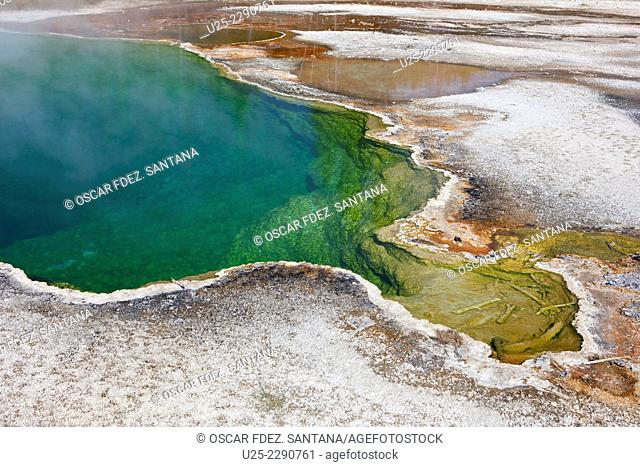 West Thumb Geyser Basin, Yellowstone National Park, Wyoming, USA
