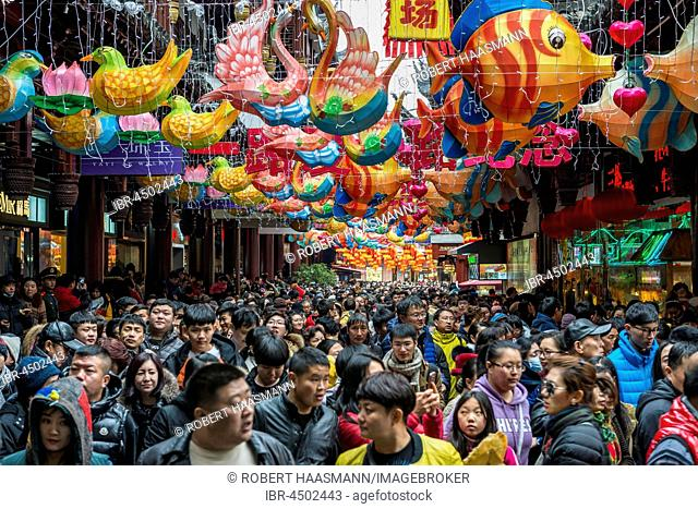 Crowds of people on Chinese New Year, historic centre, Shanghai, China