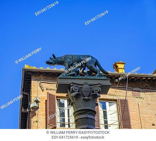 Roman Wolf Statue Cathedral Church Square Siena Italy. Roman Wolf Romulua Remus Symbols of Ancient Rome