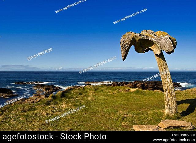 Whale Bone Skipi Geo, Orkney