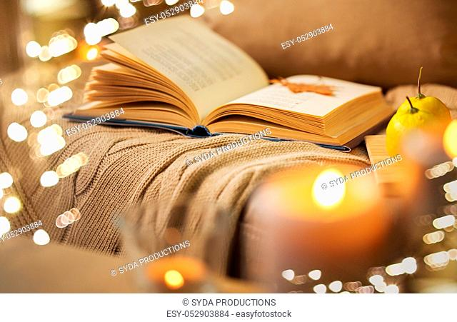book with autumn leaf and blanket on sofa at home