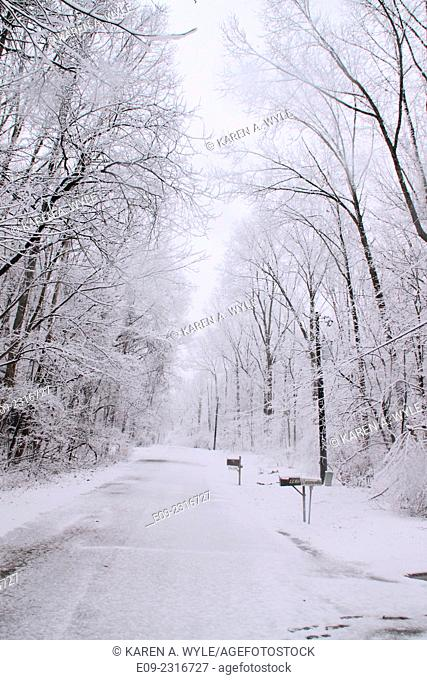 snowy street - looks black and white but has tiny bit of color on mailboxes - Monroe County, Indiana