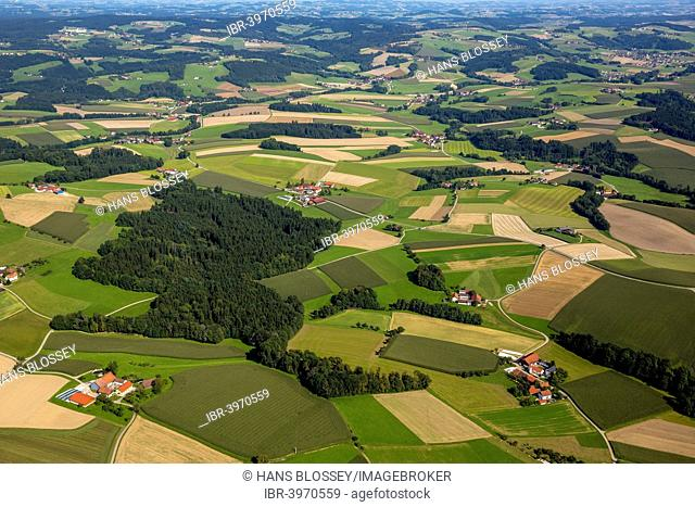 Aerial view, fields and meadows, alpine upland, Edenwiesen, Upper Austria, Austria