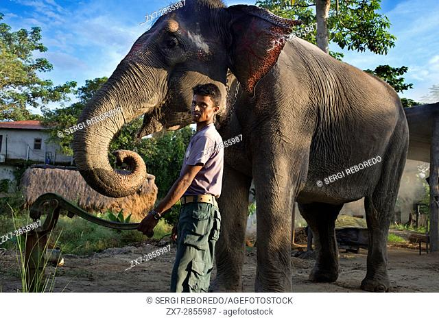 One of the elephant keepers that are destined for safaris in the Chitwan National Park