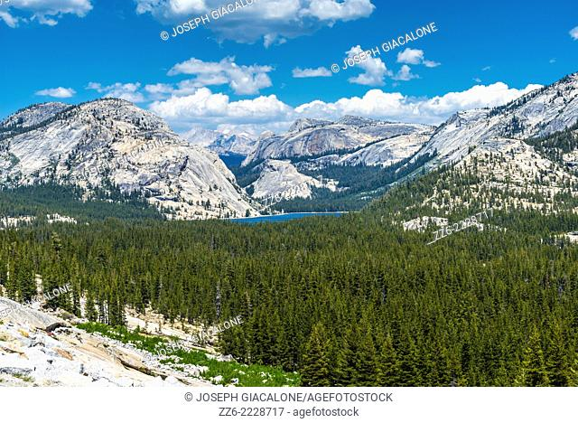 View of Tenaya Lake and granite mountains from Tioga Road. Yosemite National Park, California, United States