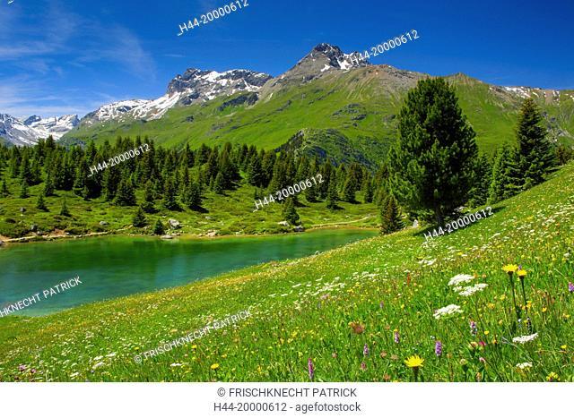 Lai Blos, Alp Flix, Grisons, Switzerland