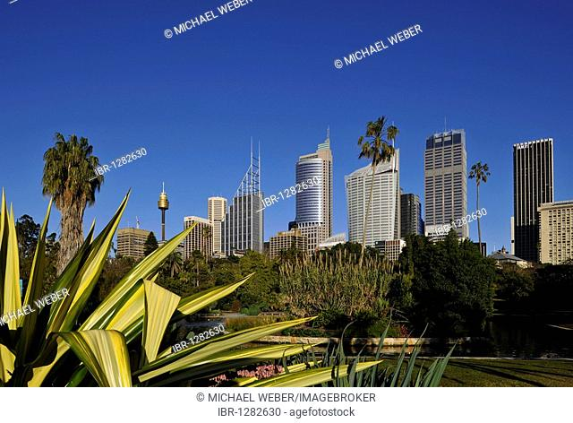 Sydney Tower or Centrepoint Tower, skyline of the Central Business District, Deutsche Bank, Royal Botanical Gardens, The Domain, Sydney, New South Wales