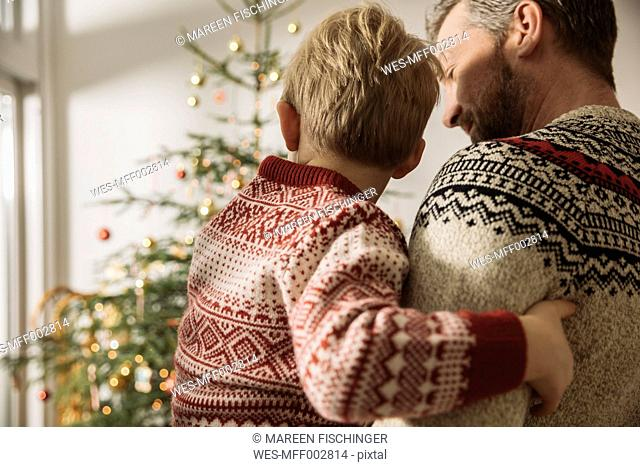 Father and little son looking at Christmas tree