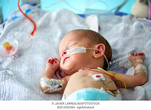 Hospitalized baby, Neonatal pediatrics, Medical care, Neonate Intensive care Unit, UVI, ICU, Hospital Donostia, San Sebastian, Gipuzkoa, Basque Country, Spain