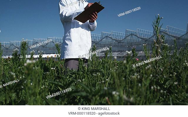 MS TU Scientist examining flora at a greenhouse / Salem, Utah, USA