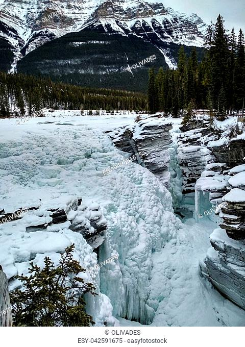 Icy Sunwapta Falls in Winter surrounded my snowy trees