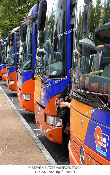 Buses at a bus terminal