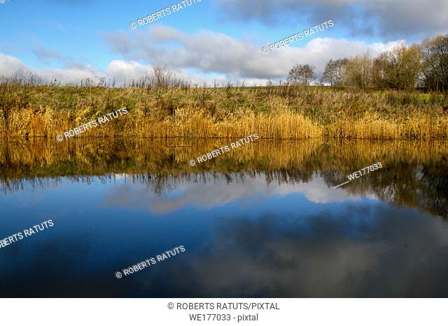 View on autumn landscape of river and trees in sunny day. Grass on river coast in autumn day. Reflection of autumn trees in water. Autumn in Latvia