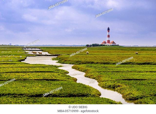 Germany, Schleswig-Holstein, North Frisia, peninsula Eider (river)stedt, Westerhever, Westerheversand, salt meadows with lighthouse